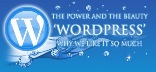Why WordPress makes a great choice for your website!